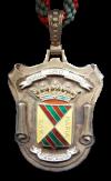 medalla de oro del Ayto. Torrrelavega