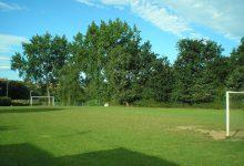 Campo de futbol de cesped natural